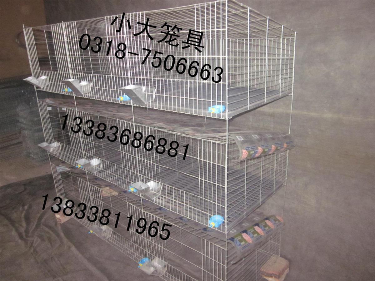 18091925_副本.jpg