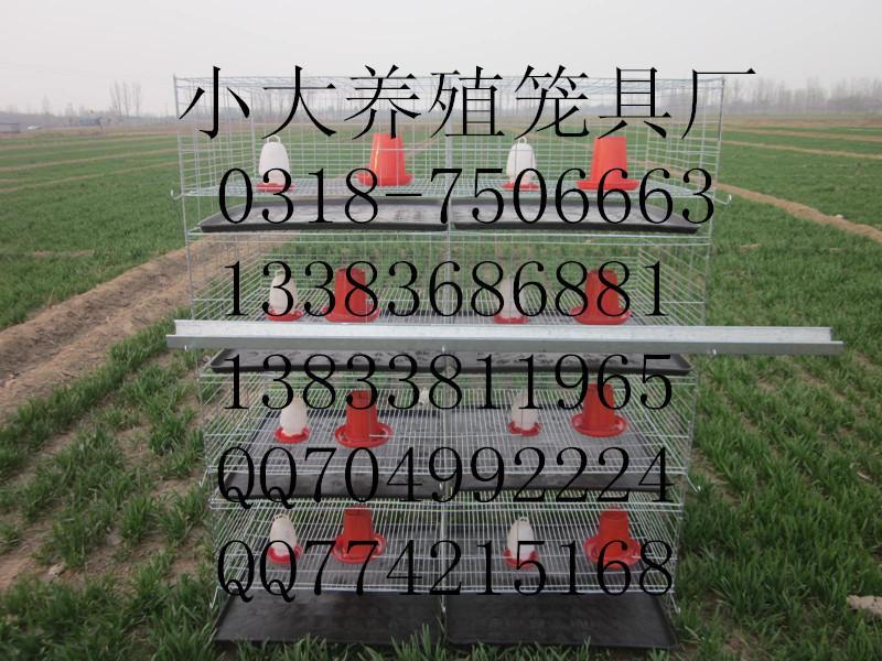 照片 00120160320_副本.jpg